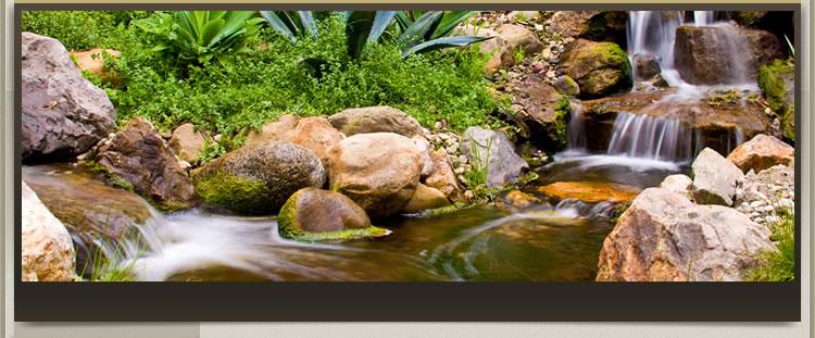 thác nước sân vườn
