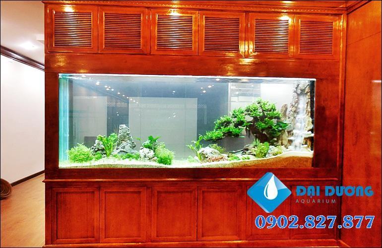 thiết kế hồ thủy sinh