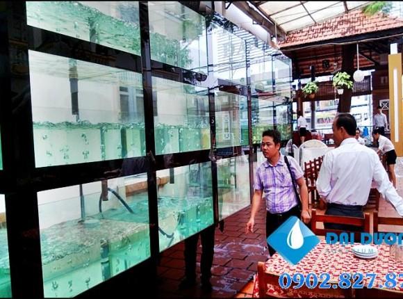 [Video] hồ hải sản nhà hàng Đại Dương