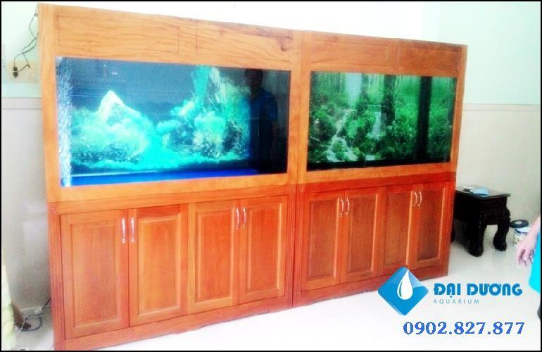 hồ cá rồng cặp nuôi song long