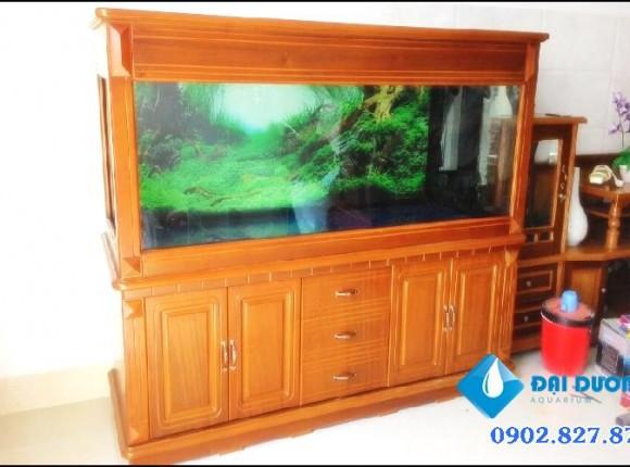Hồ cá rồng Anh Mạnh Bình Tân