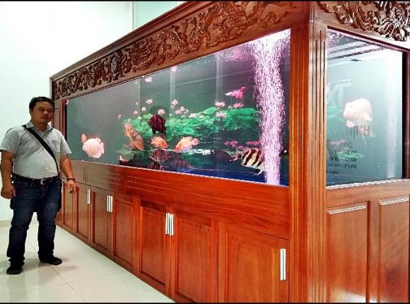 Hồ cá rồng dài 3,9m tại nhà A.Xuân Quận 7
