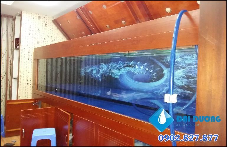 thi công hồ cá rồng khủng tại quận 8