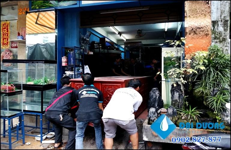 hồ cá rồng siêu phẩm 6 bộ hồ
