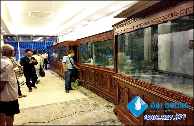 hồ cá rồng siêu phẩm 6 bộ hồ 5