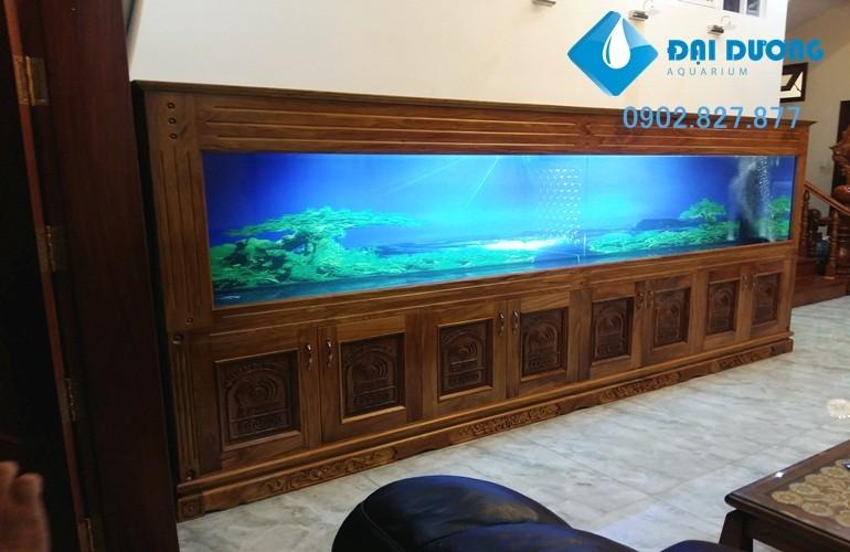 thiết kế hồ cá rồng dài 4m