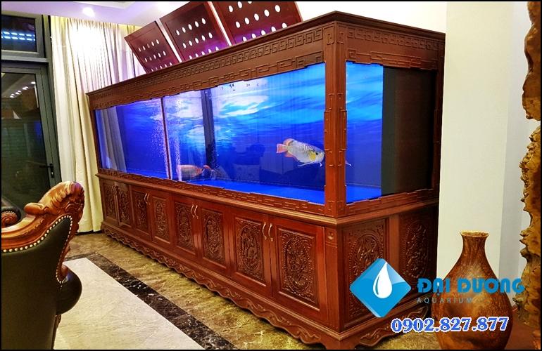 hồ cá rồng khủng