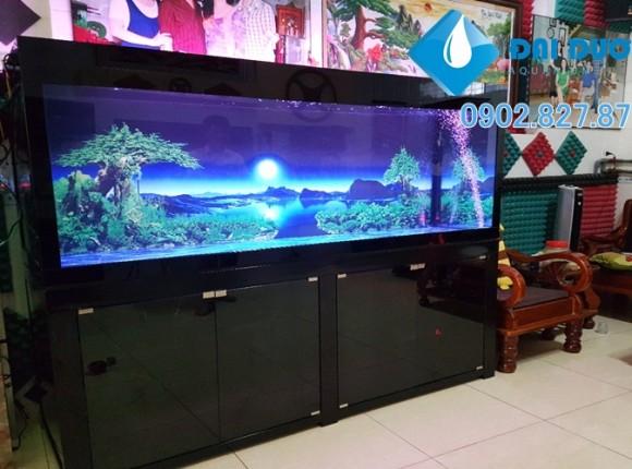 Hồ cá rồng Anh Phúc Đồng Tháp