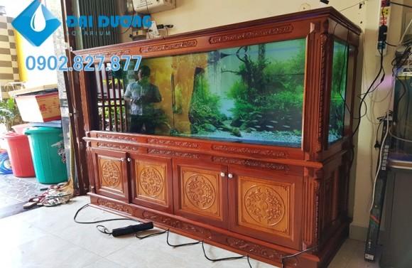 hệ thống hồ cá rồng tại Cà Mau