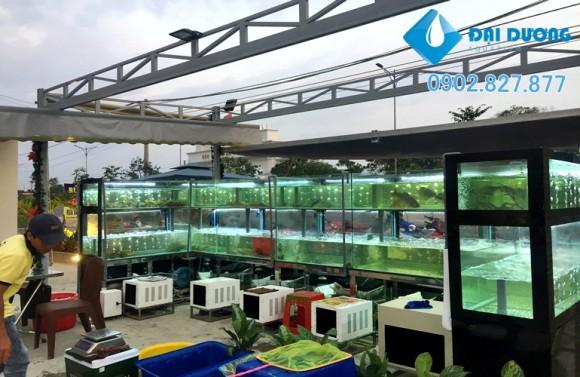 hồ hải sản nhà hàng thành thiên 4