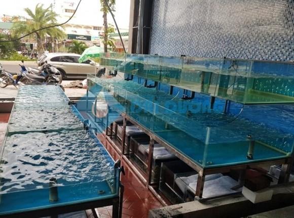 Lắp hồ nuôi hải sản cho nhà hàng Vũ Nữ Quy Nhơn