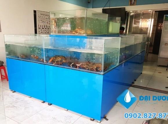 Hồ nuôi hải sản nhập khẩu tại tomboi.vn